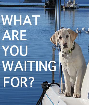 Brandi Dog says What are you waiting for? Book a tour!